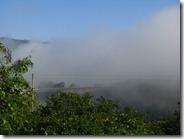 El puente cubierto de neblina