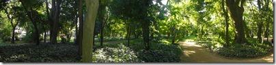 Dentro del Botánico.