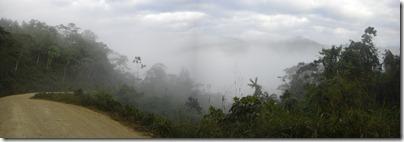 Los Yungas envuelto en neblinas.