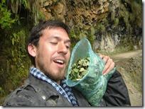 Disfrutando de la coca que compré en Coroico. La altura que seguía aumentando no era un problema.