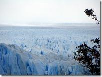 El vasto campo de hielo